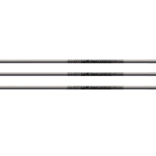 Tube EASTON XX75 Platinium +