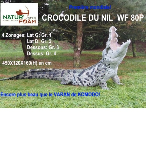 3D NATURFOAM Crocodile du Nil