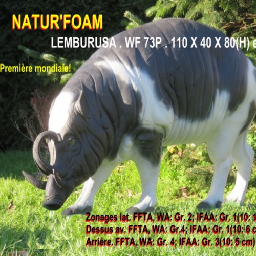 3D NATURFOAM Lemburusa