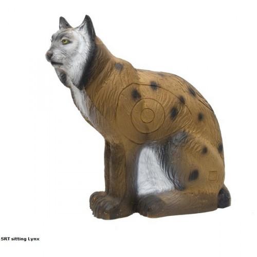 3D SRT - Lynx Assis