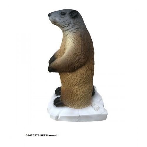 3D SRT - Marmotte