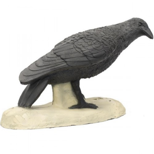 3D SRT - Corbeau