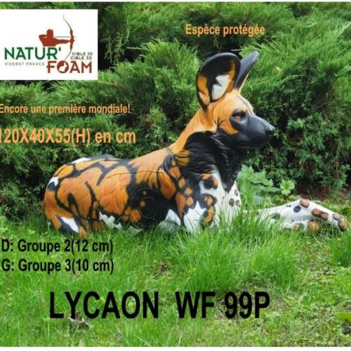 3D NATURFOAM - Lycaon