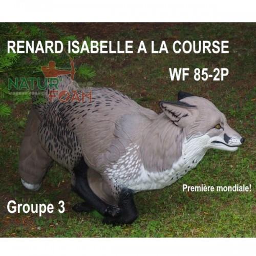 3D NATURFOAM - Renard Isabelle à la Course